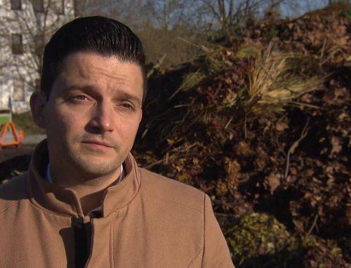 SPD-Bürgermeister fordern Arbeitsgruppe anlässlich der stark steigenden Gebühren bei der Grüngutverwertung